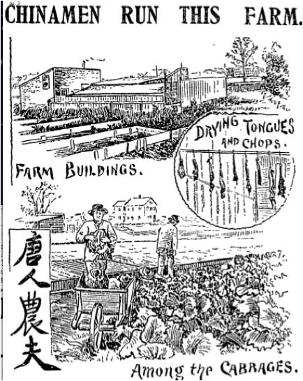 chinamen-run-this-farm